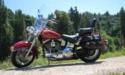 Thumbnail image for 1997 Harley-Davidson Softail FXST FLST Manual