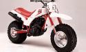 Thumbnail image for Yamaha Big Wheel 200 BW200 Manual