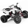 Thumbnail image for Yamaha Raptor 250 YFM250R YFM250 ATV Service Repair Workshop Manual