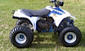 Thumbnail image for Suzuki QuadSport 250 LT250S LT 250S Manual