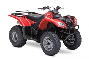 Suzuki Ozark 250 LT-F250 LTF250 Service Repair Workshop Manual