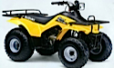 Thumbnail image for Suzuki QuadRunner LT160E LT-F160 LTF160 LT160 Manual