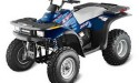 Thumbnail image for Polaris Xpress 300 Manual