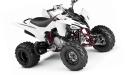 Thumbnail image for Yamaha Raptor 250 YFM250R YFM250 ATV Service Repair Workshop Manual